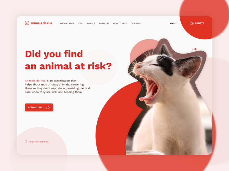Landing Page | daily ui #003 dailyui red website uiux help stray adopt adoption donate donation organization animals dog cat landing page dailyuichallenge daily ui ui above the fold