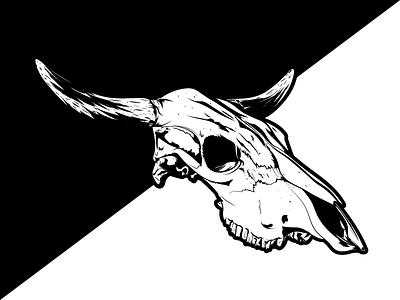 Skull detailed dead illustration skull cattle cow