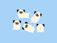 Pug Lyfe