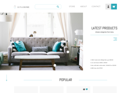 Furniture store design web ui ux