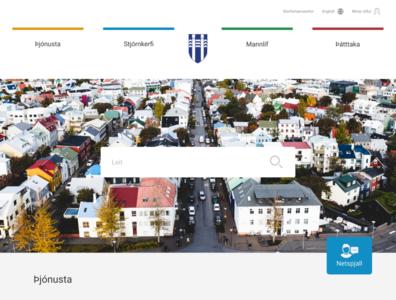 Reykjavik webpage web design ui ux