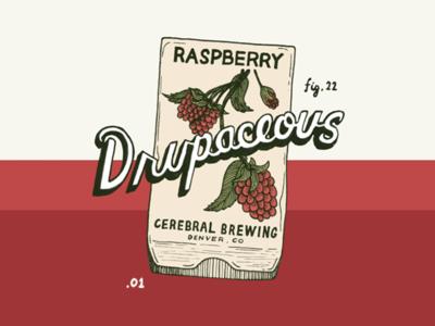 Drupaceous