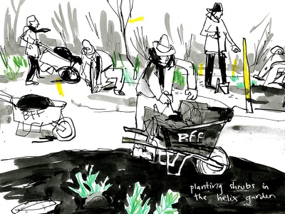 food forest live drawing ink reportage seattle