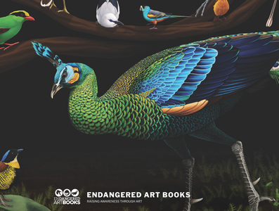 Endangered Art Books Logo & Website; Losing Altitude Book logo design logo design illustration website web design branding graphic design print design print