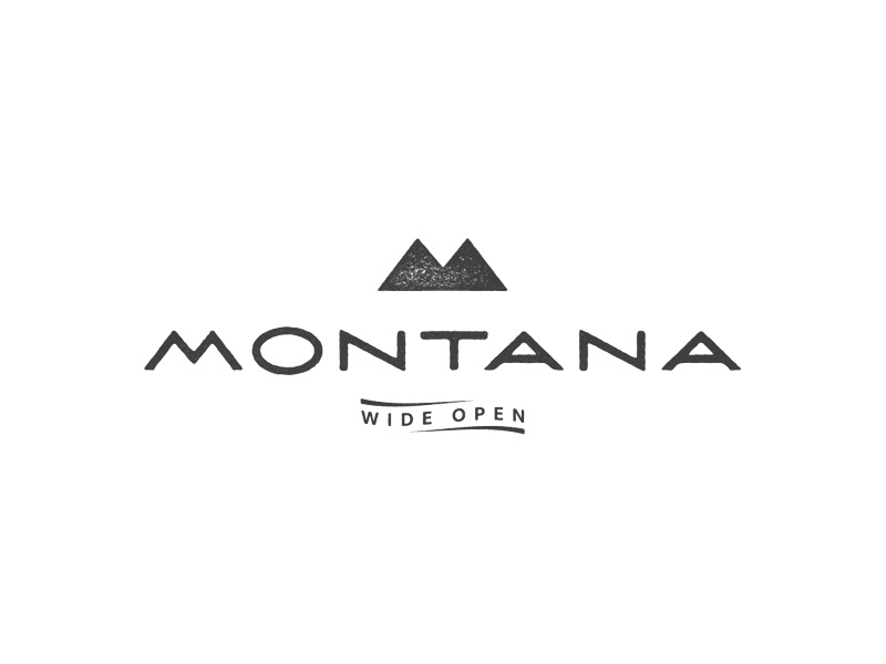 Montana 1 dribbble