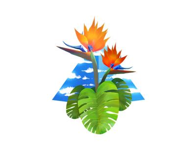 Paradise tropical palm california bermuda majestic procreate paradise flower illustration