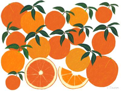 Orange Harvest food illustration citrus illustration oranges fruit food