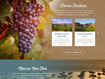 Santa Maria Valley Tourism Website website html5 video wine barbecue homepage responsive travel tourism