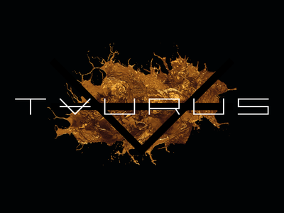 Taurus Group typeface type logotype logo identity design identity premium minimal vector icon typography branding design