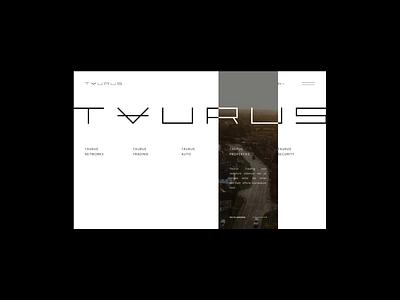 Taurus Group website design grid layout grid typography luxury design minimal design minimalism ux ui webdesign