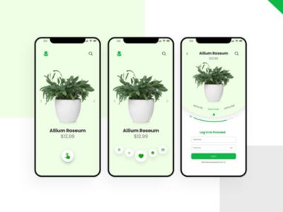 Flower e-commerce UI/UX interface
