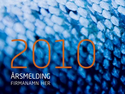 Excerpt from an annual report blue orange print