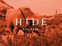 Hide - Social Graphic