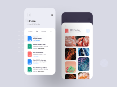 File Sharing iOS App Concept