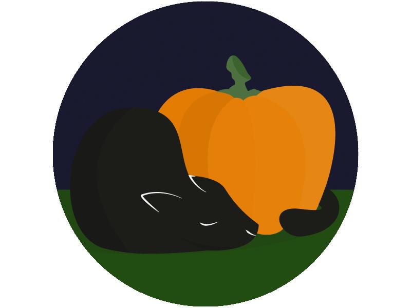 Pumpkin Cat sleep illustrator illustration vector simple night fall october sticker mule halloween pumpkin cat