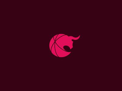 Chciago Bulls Signet redesign concept