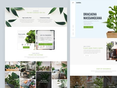 Ocolus Plant - Multi Purposes Woocommerce Theme slider wordpress design theme for wordpress theme design theme forest hero area creative  design tree pot plant market decor wordpress multipurpose minimal typography design ui ux ecommerce