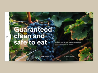 The Huxton Hero Concept vegetables vegetable food healthy wordpress ecommerce design ecommerce ui  ux hero section minimal typography ui design uiux ui