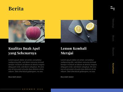 Section News Web Design webiste portal news uiwebdesign uiinspiration uiuxdesign uiux uxigers