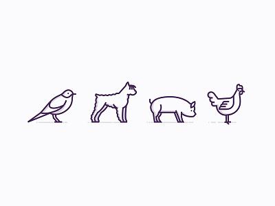 Animal icons farm life chick pig dog bird icon
