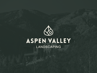 Aspen Valley Landscaping luxury plants water landscape landscaping irrigation native nature leaf aspen valley colorado valley aspen
