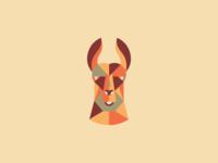 Geometric Llama