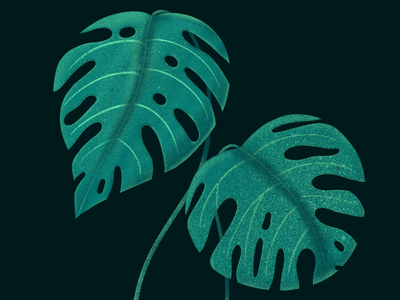Plantclub procreate green illustration plantclub plant
