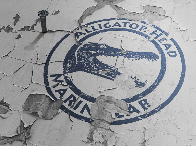 Alligator head marine lab logodesign typography design logo