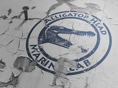 Alligator head marine lab logodesign typography design logo