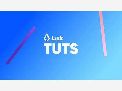 Lisk Hub Tutorial Intro ui design animation