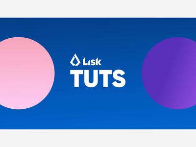 Lisk Hub Tutorial Intro