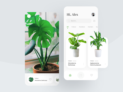 Plant Identifier App cards ui search bar slider vegetation hobby nature pot monstera indoor greenery iphone 11 pro app mobile ui identifi scan scanner plants white plant ui