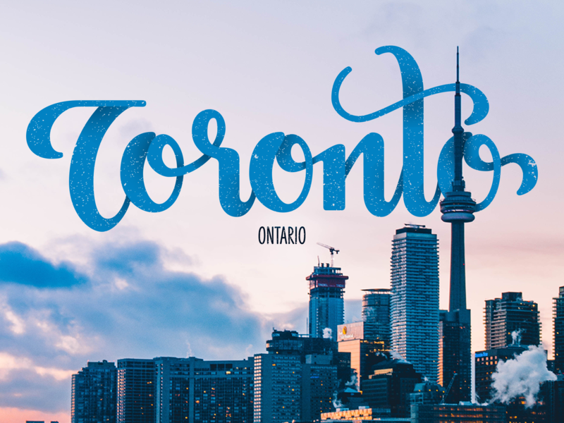 Toronto Lettering composite vector toronto hand lettering lettering typography briefbox