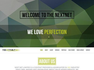 Website Design ineraction design web ux ui graphic design art direction branding vector flat design