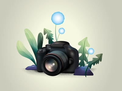 Wild Camera