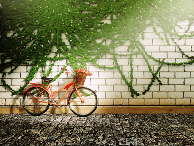 Let's ride😉 green atmosphere god rays high poly model cg art creative b3d render 3dcycle 3d brickswall