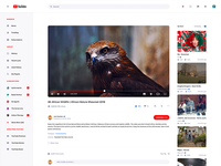 Freebie YouTube Redesign Concept Light & Dark Mode