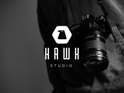 Hawk Studio Logo