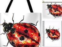 """Ladybug"" product launch!"