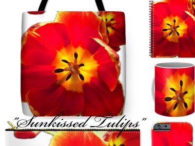 """Sunkissed Tulips"" 🌷"