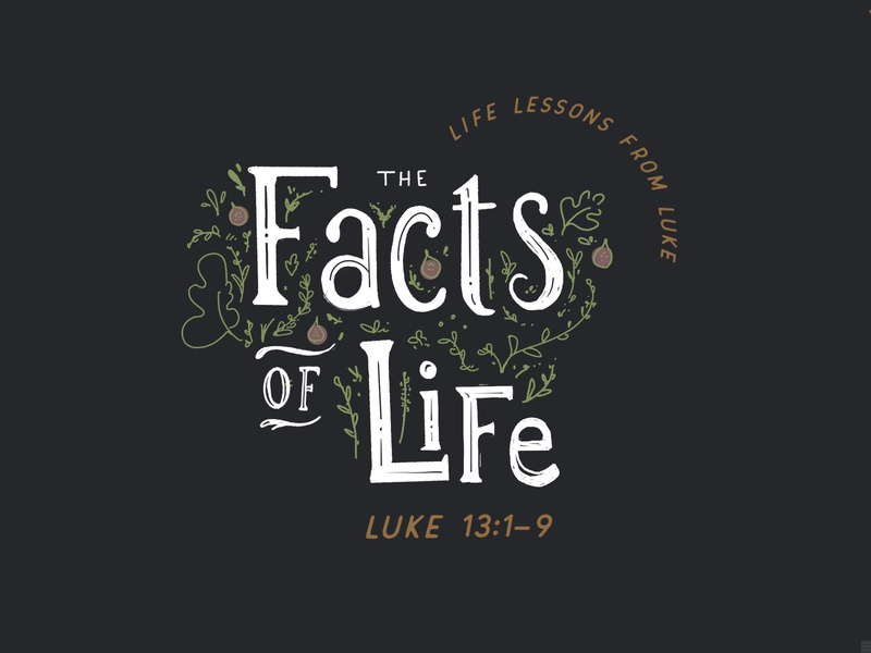 The Facts of Life   Life Lessons from Luke