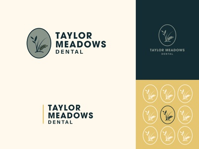 Taylor Meadows Dental | Branding handdrawn illustration identity midwest earthy vibes nebraska meadows dental logo design vector illustration branding