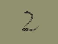 2 | Snake Typography