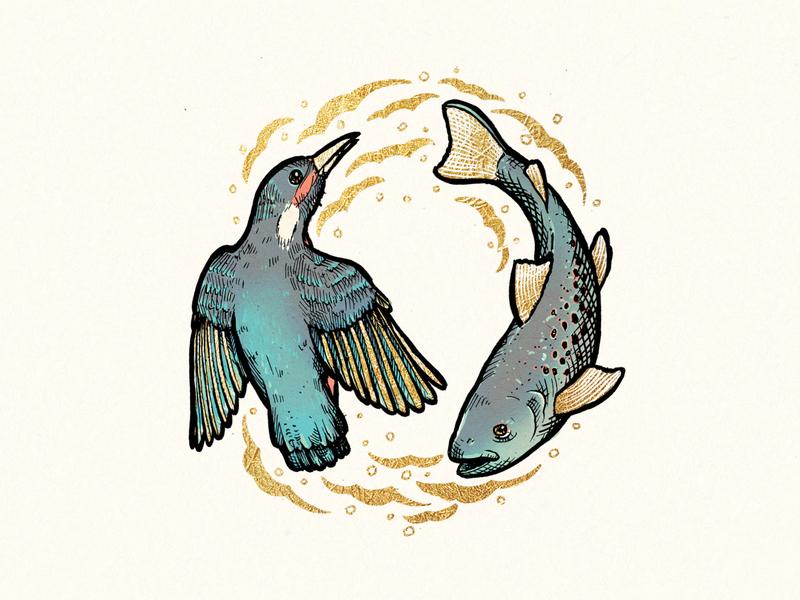 Royal Card Illustration - Lahinja Park slovenia nature fish bird card luxury gold illustration ink drawing