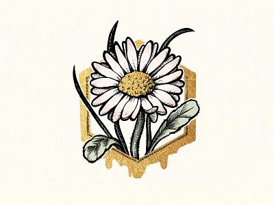 Royal Card Illustration - Medeni Butik Voglar honey flower slovenia luxury ink gold design card illustration drawing