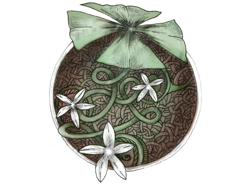 Shamwow shamrock illustration