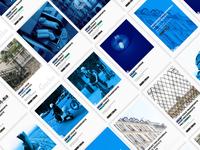 Print design ad - Gecko