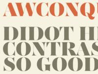AW Conqueror Didot Black preview