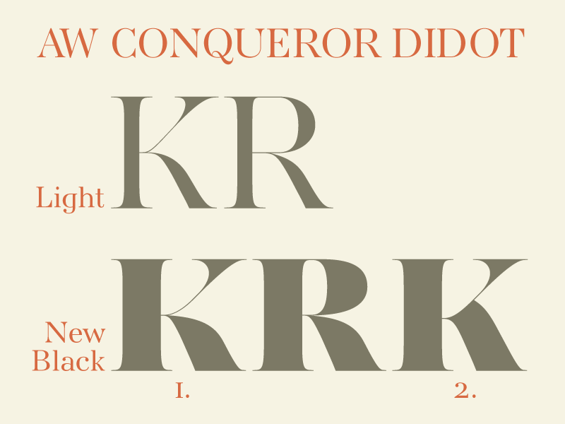 AW Conqueror Didot Black K or K? awconqueror didot 2014 zecraft typofonderie high contrast font typeface typography