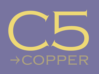 Copper Light pro opentype 2015 us cosmetic serif sans zecraft copper